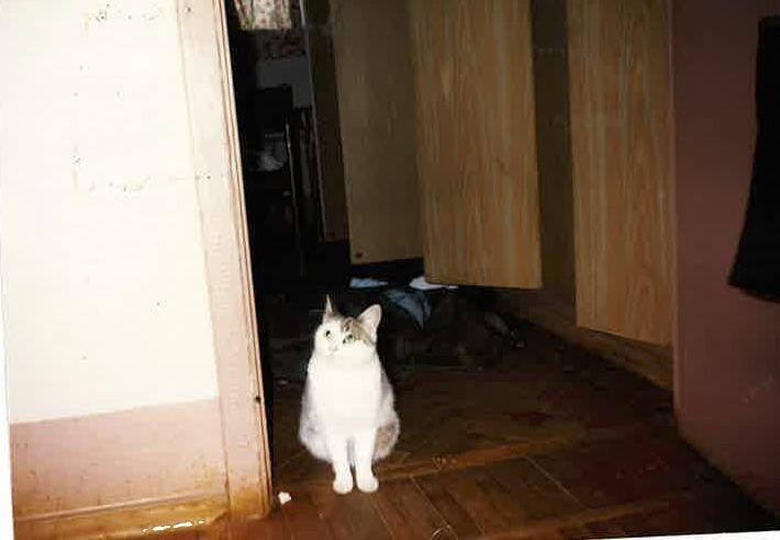 myron in doorway - myron-in-doorway